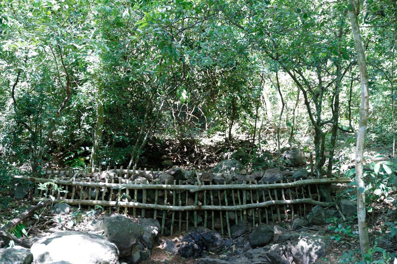 ONE MAZDA TEAM สร้างฝายชะลอน้ำ อุทยานแห่งชาติน้ำตกสามหลั่น สระบุรี