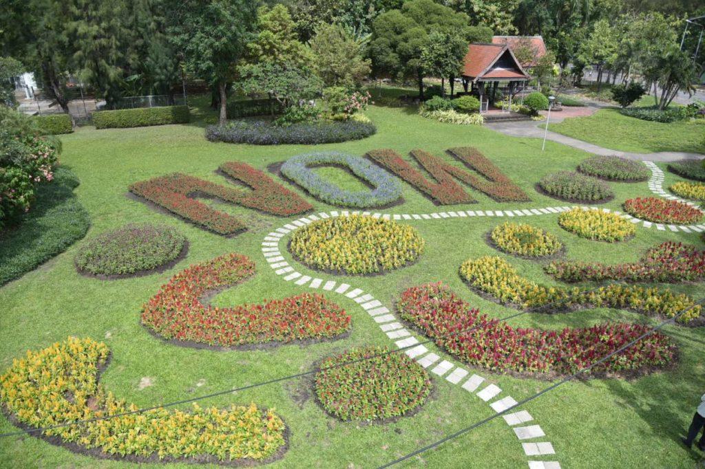 กทม.-เอกชน เนรมิตรสวนลุมฯ สวย เปลี่ยนร่มสีแดง-ขาว-น้ำเงิน