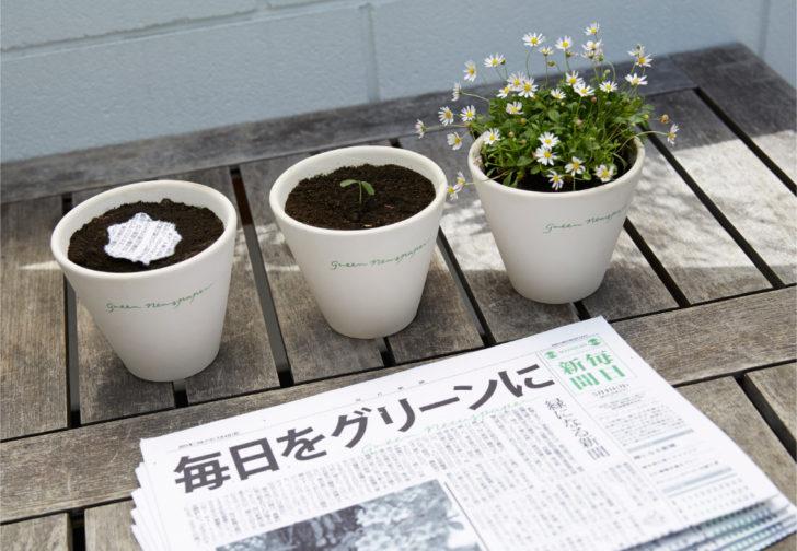 """""""หนังสือพิมพ์สีเขียว"""" อ่านจบนำไปปลูกต่อได้ ไอเดียสุดครีเอตจากประเทศญี่ปุ่น"""